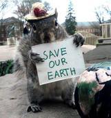 The Squirrel Whisperer of Penn State University