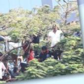 Sri Lankan dies in India after being hit by bike
