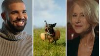 NFL 2016 Super Bowl 50: Commercials cashing in ahead of golden anniversary