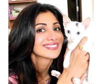 Meet Shilpa`s new companion