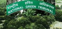 NGT slams 4 parties including Odisha, Chhattisgarh during hearing on Mahanadi water row