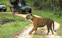 Tourism, Forest Deparment Lock Horns Over Road Inside Kali Tiger Reserve