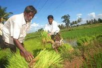 MNS feels project at Purandar can hamper agriculture