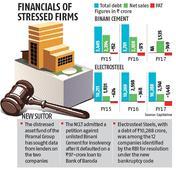Piramal Group in race to buy stakes in Binani Cement, Electrosteel Steels