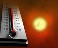 Temperature soars up to 50 degree celsius in interior districts