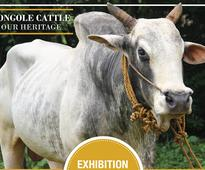 A unique Cattle and Dog show at Shiva Parvathi Pushpa Gardens, Maduravoyal
