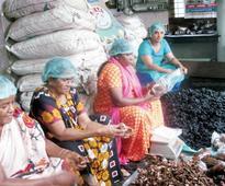 Surya Kudumbashree enters other states; tamarind, jackfruit major hits