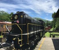 Save the Catskill's Railway, Save the New York State Past