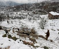 Airfare to and fro Srinagar surges after snow disrupts flights