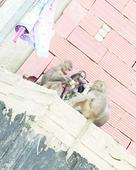 Monkey menace in Makkah