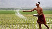 Fertiliser demand may grow by 3% in next 2 years: Report