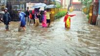 Heavy rains to continue for next 48 hours: IMD