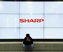 Sharp plans stock incentives to stop brain drain