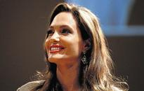 Jolie's 'Blood and Honey' not plagiarised