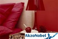 Akzo Nobel India Q3 PAT at Rs. 63 crore