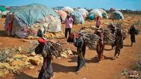 World has just months to stop starvation in Yemen, Somalia: Red Cross