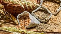 Tamil Nadu, Kerala to get PDS grains from Centre at minimum support price rates