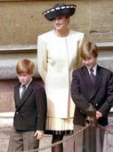 Princes William, Harry had 'short' chat with Diana on day she died