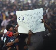 Jallikattu: Police begin evicting protesters, roads to Marina Beach shut