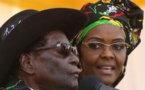 Grace Mugabe 'invoking diplomatic immunity' over allegations she assaulted young South African model