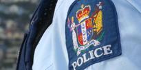 Dunedin assault: Police hunt for attackers