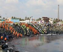 Chennai oil spill: NGT seeks report in 24 hours