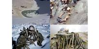 The Skeleton's of Roopkund