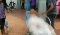 11 students injured as truck hits school auto rickshaw