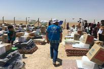 UN refugee agency begins delivering supplies to families escaping besieged Fallujah