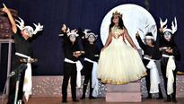 The curtain falls on Chinnara Mela