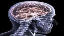 Brain dead man's organs save four lives