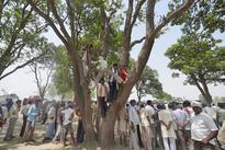 Will hang ourselves from same tree: Badaun victims' father