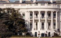 White House magnolia tree to be cut back after 182 years