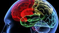 Environmental toxins risking our brains