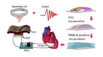 In vivo self-powered wireless cardiac monitoring