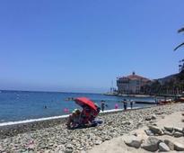 Catalina Island: golf, beach and buffalo milk