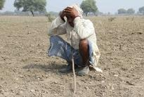 Faced with drought, Indian farmers look for help