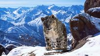 TV News Roundup: BBC America Sets Planet Earth II Premiere Date