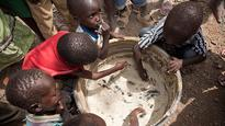 FAO warns of critical levels of food security