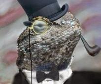 Fake 'Lizard Squad' DDoS demands hit UK businesses spurring police warning