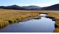 Officials approve Jemez Mountains restoration project