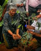 The green crusader of Coimbatore, Vanitha Mohan