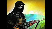 Top Hizbul Mujahideen militant arrested in Kashmir
