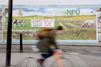 NFU agrees on 'options paper' detailing vision for post-Brexit agriculture
