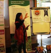 The Philippines - Heirloom and stress-tolerant rice varieties presented at International Fund for the Agricultural Development review